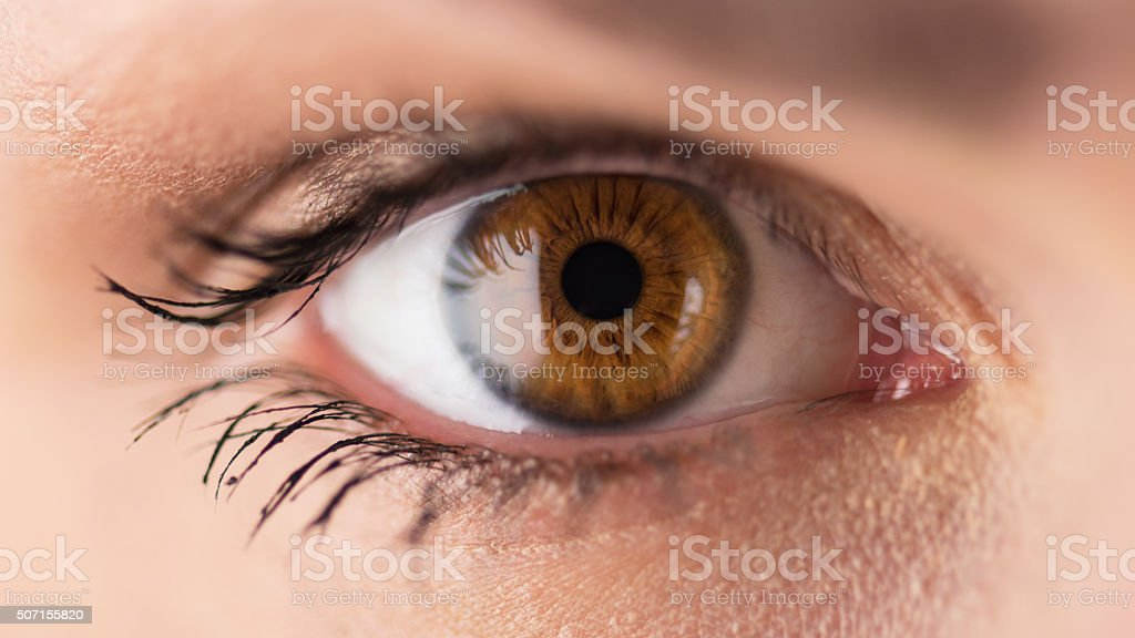 Brown eyes - close up stock photo
