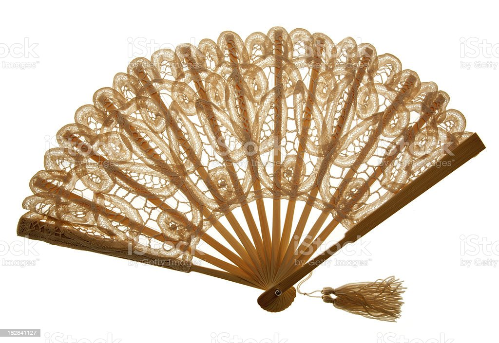 Brown Fan royalty-free stock photo