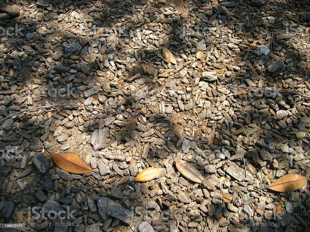 brown ground royalty-free stock photo