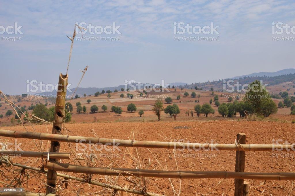 Brown hayfield stock photo