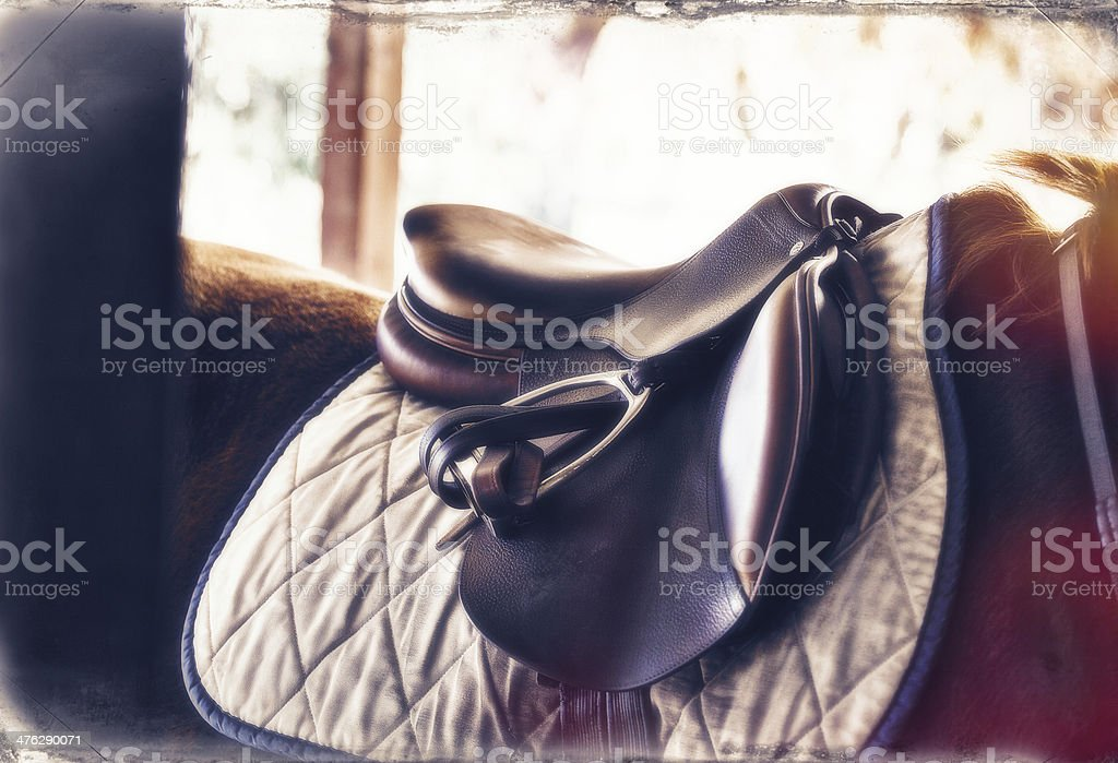 Brown Leather Detailed English Saddle stock photo