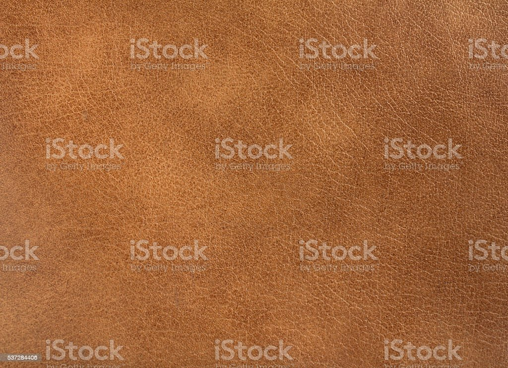 brown leather stock photo