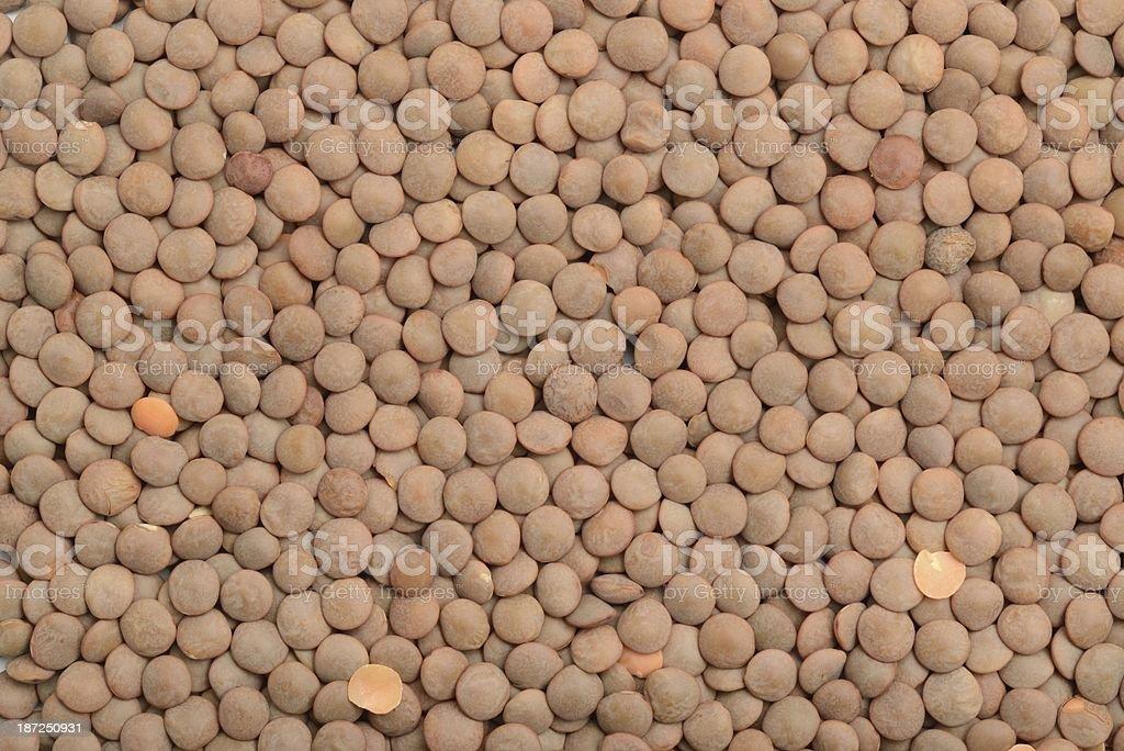 Brown lentil background stock photo
