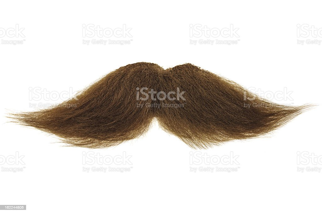 Brown mustache isolated on white stock photo