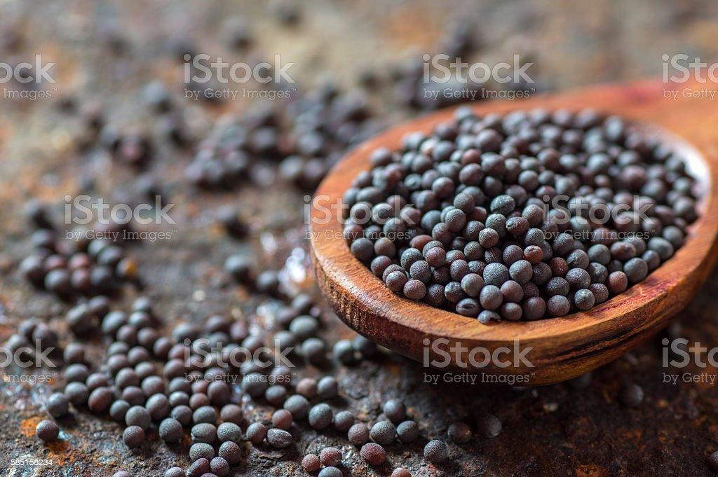 Brown Mustard Seeds stock photo