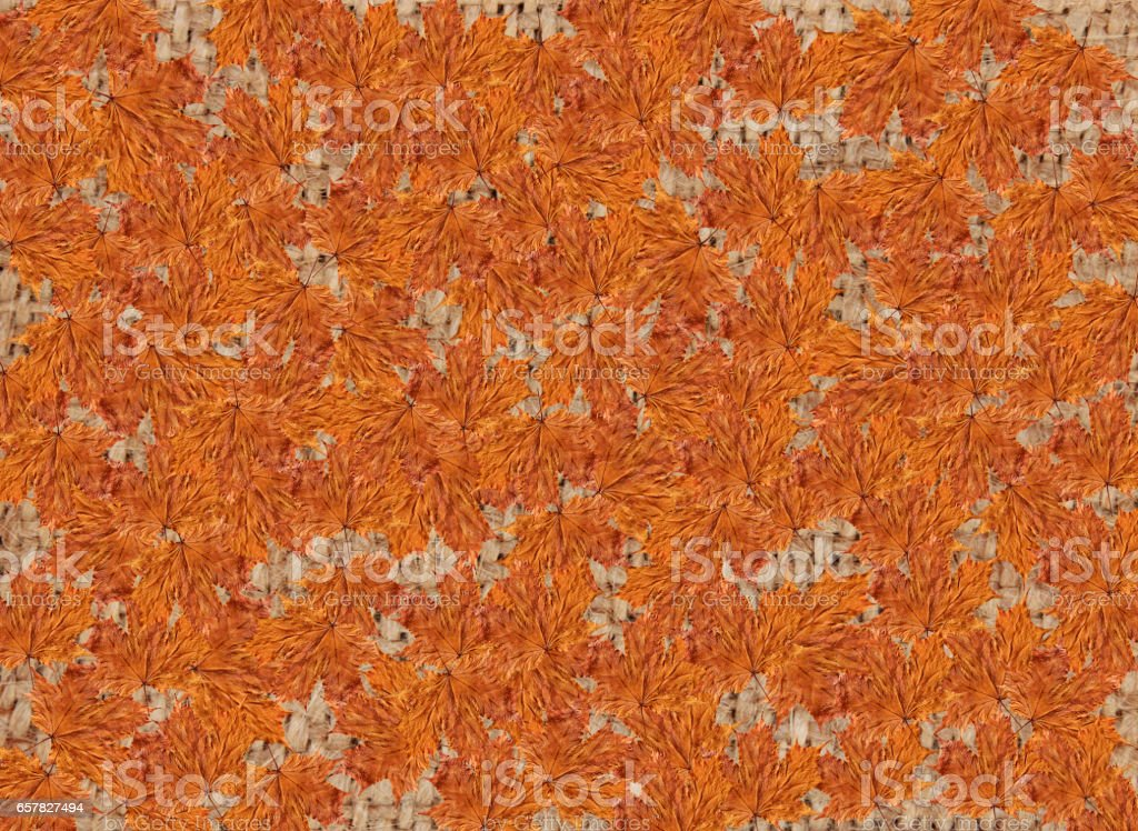brown nice texture from yellow Autumn leaves stock photo