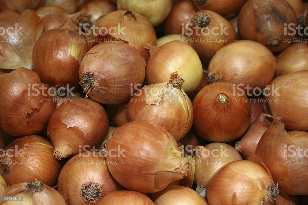 Brown onions royalty-free stock photo