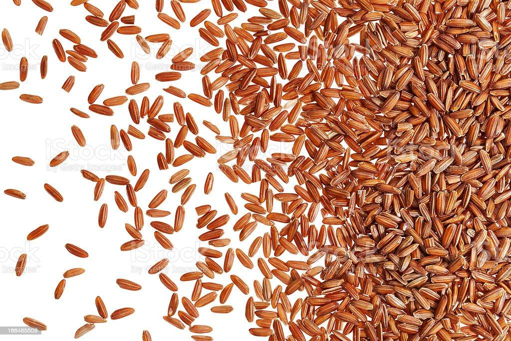 brown rice grain royalty-free stock photo