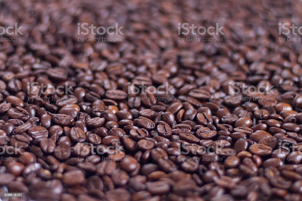 brown roasted arabica coffee stock photo