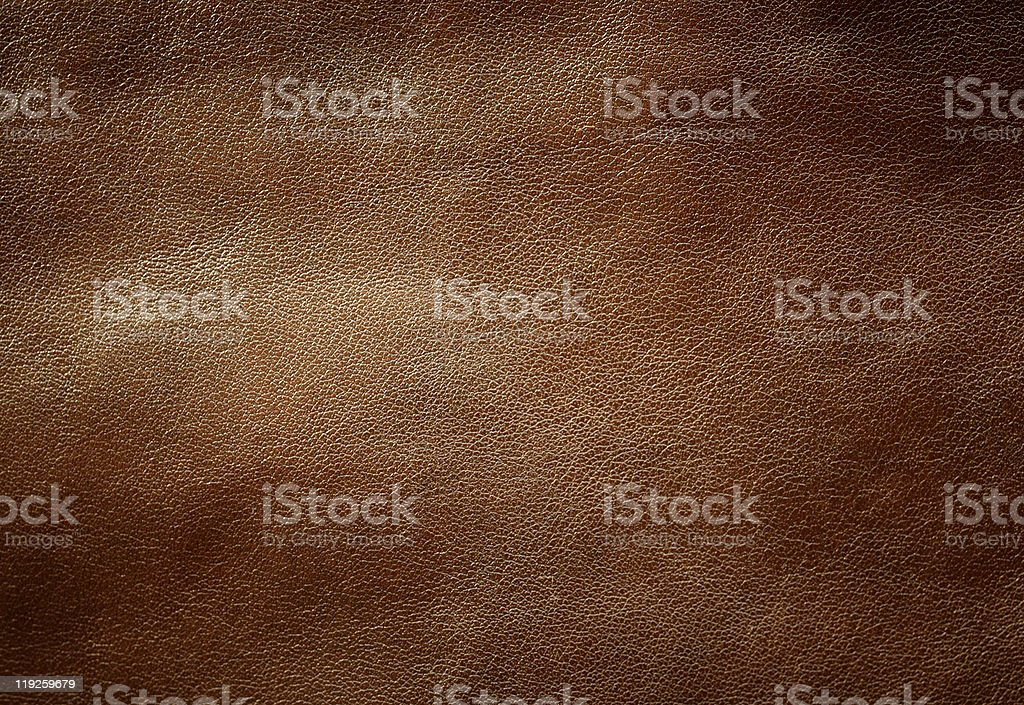 Brown Shiny Leather Texture. stock photo