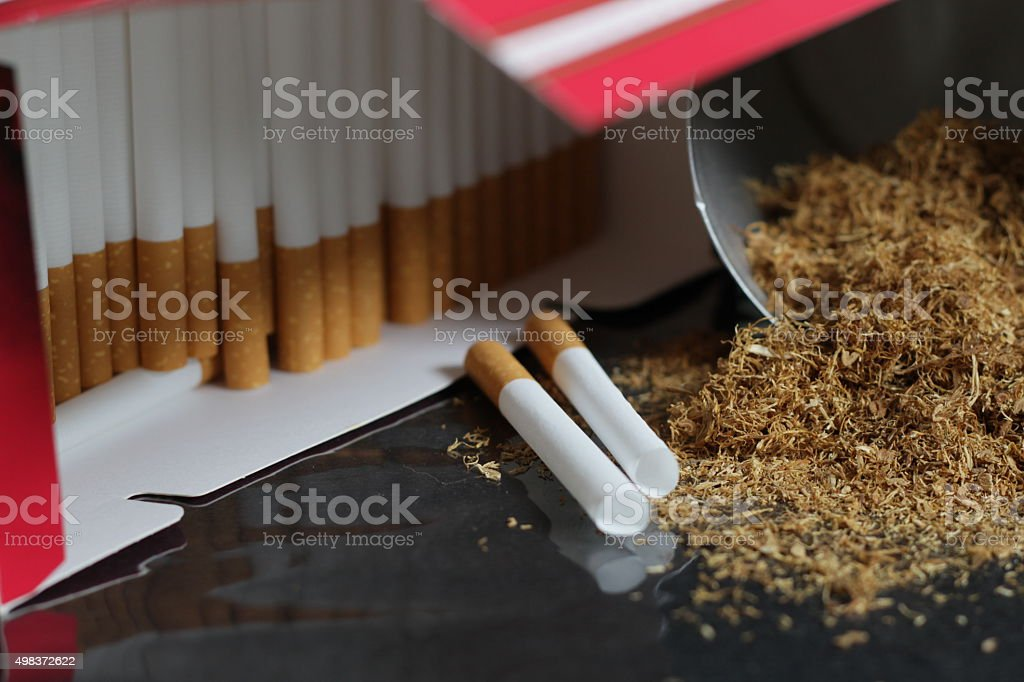 Brown sliced Tobacco with cigarette paper stock photo