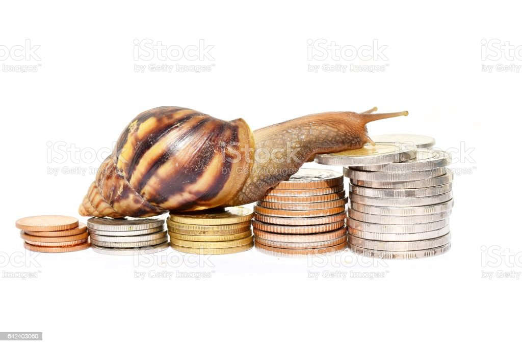Brown snail climbing  the pile of coins stock photo