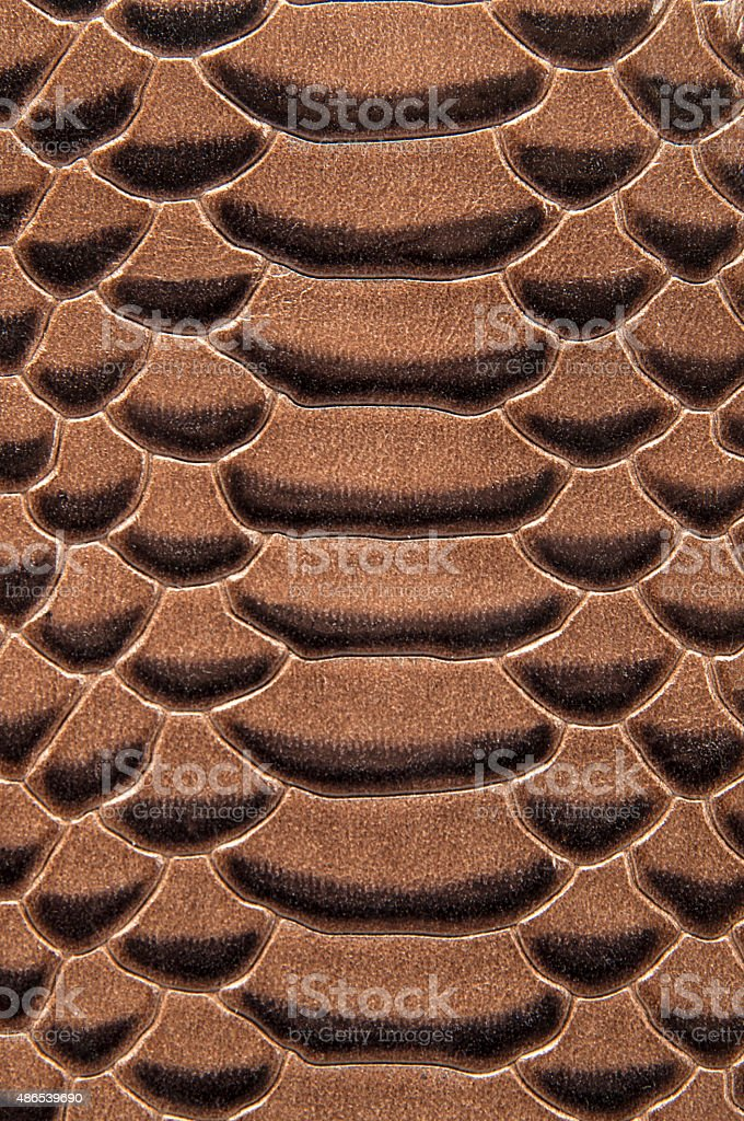 Brown snakeskin or crocodile texture for background stock photo