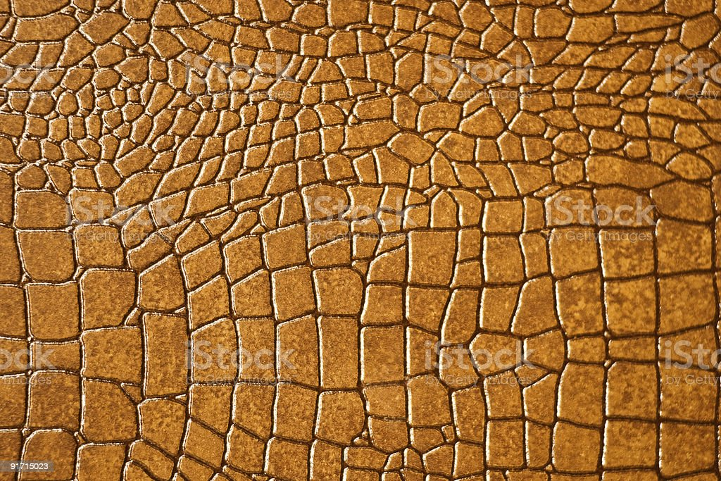 Brown snakeskin or crocodile texture for background royalty-free stock photo
