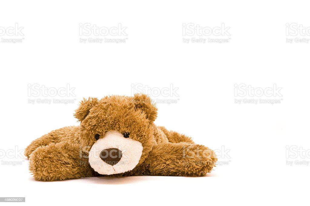 A brown teddy bear is pictured against a white background  stock photo