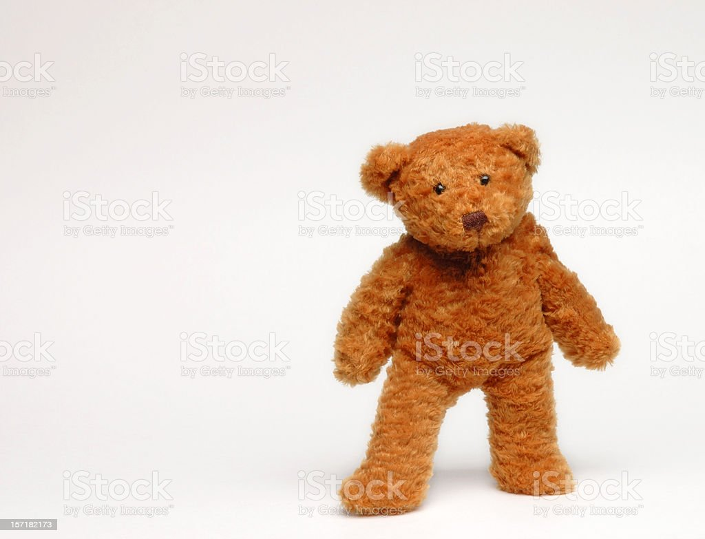 Brown teddy bear standing in white background royalty-free stock photo