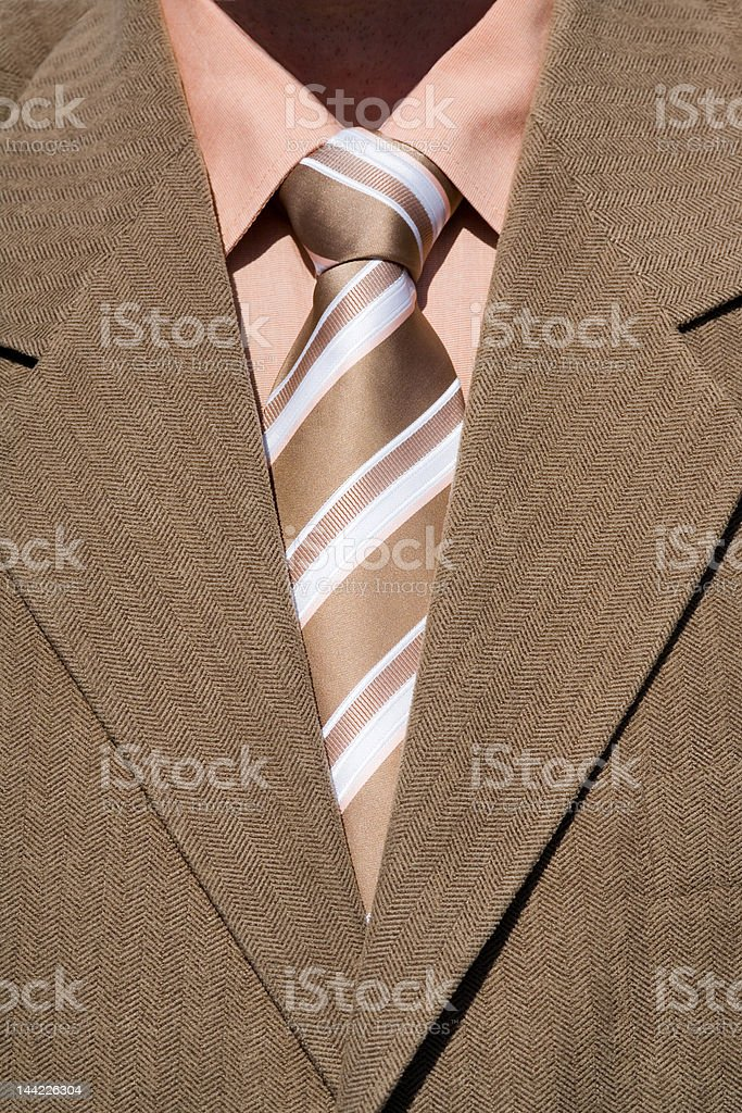 brown tie and suit royalty-free stock photo