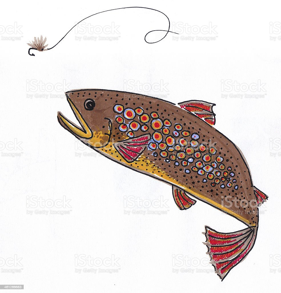 Brown Trout after Fly royalty-free stock photo