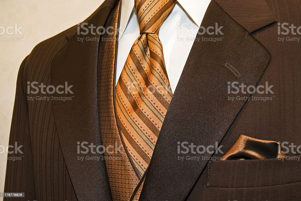 brown tuxedo with striped tie royalty-free stock photo