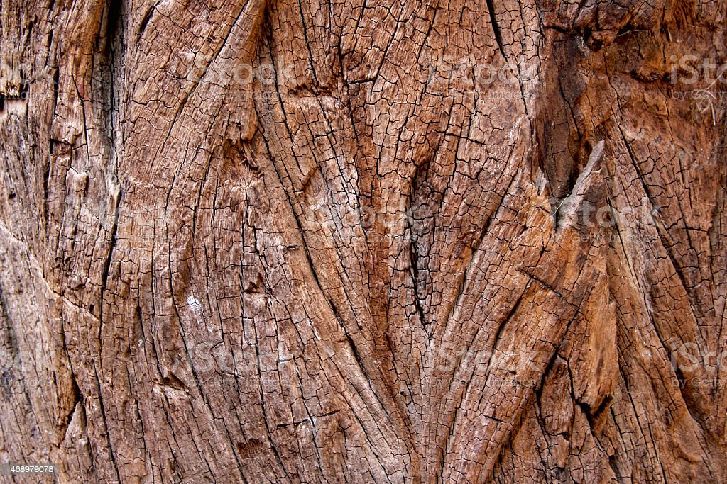 Brown wood texture royalty-free stock photo
