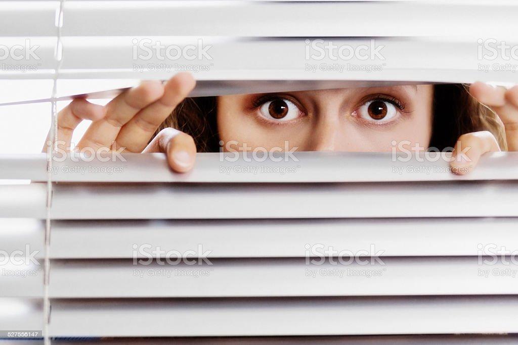 Brown-eyed beauty peeps, terrified, through closed venetian blinds stock photo