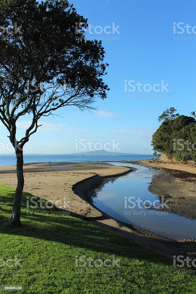 Browns Bay and Rangitoto stock photo