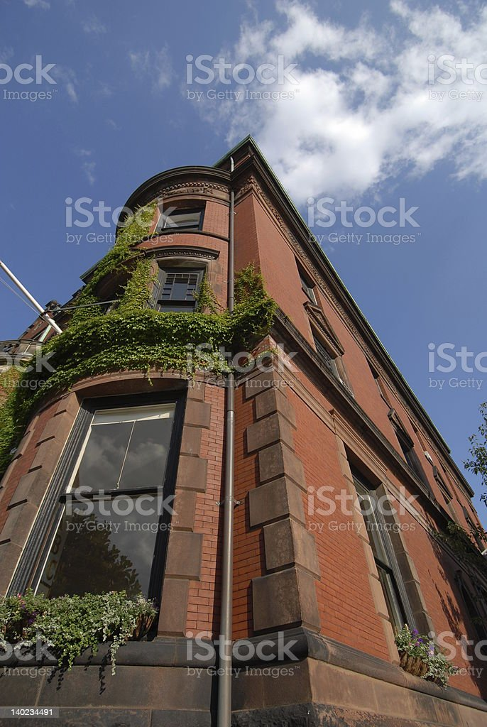 Brownstone reaching for the sky royalty-free stock photo