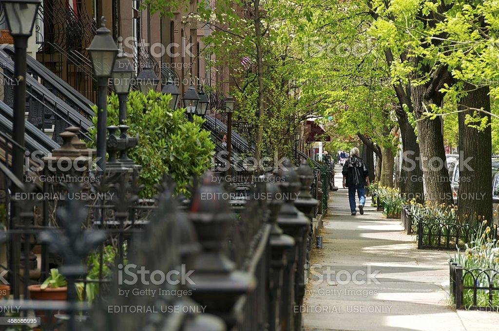 Brownstone row houses, Park Slope, Brooklyn, New York City, royalty-free stock photo