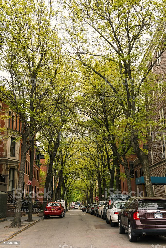 Brownstone townhouse residential street in Brooklyn Heights, New York stock photo