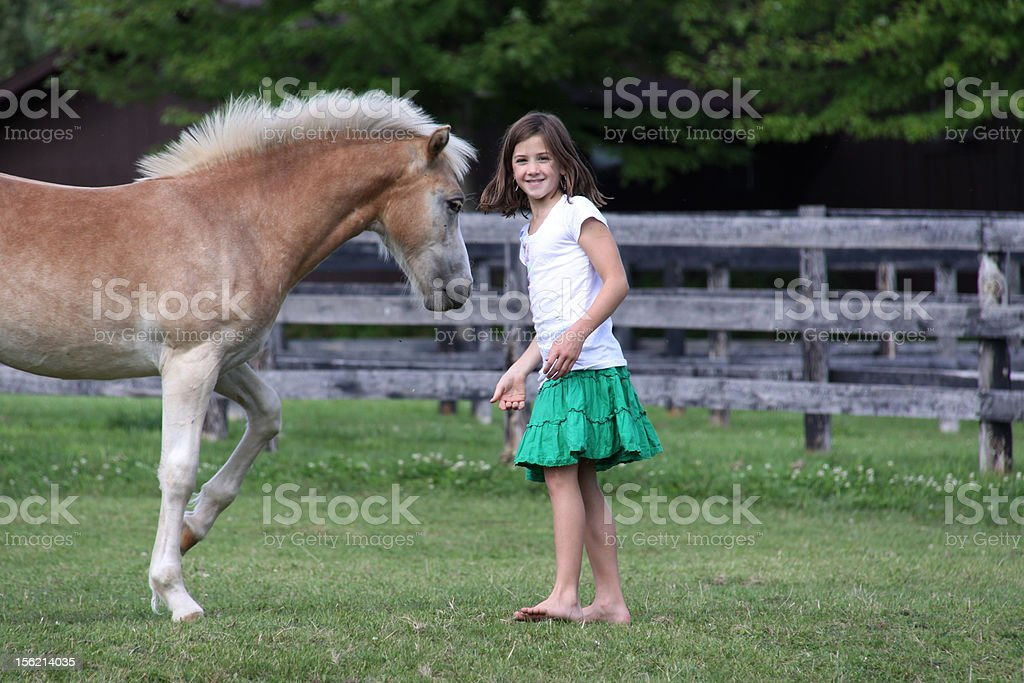 brunette girl with young horse royalty-free stock photo