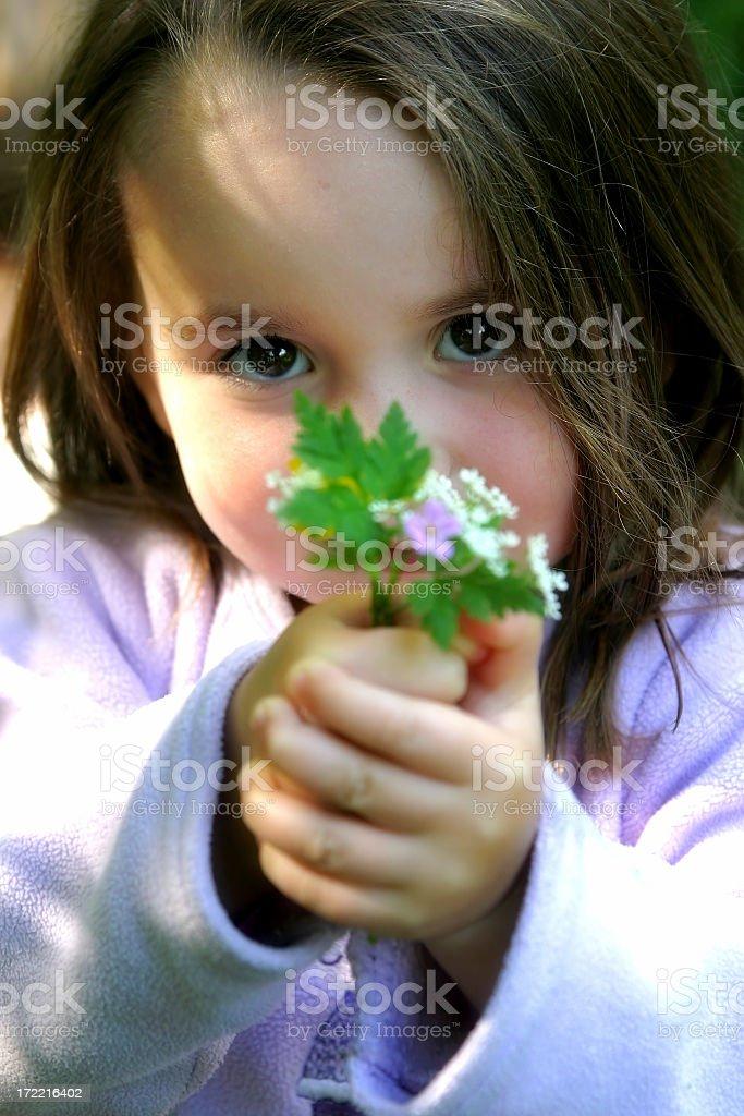 A brunette little girl holding flowers royalty-free stock photo