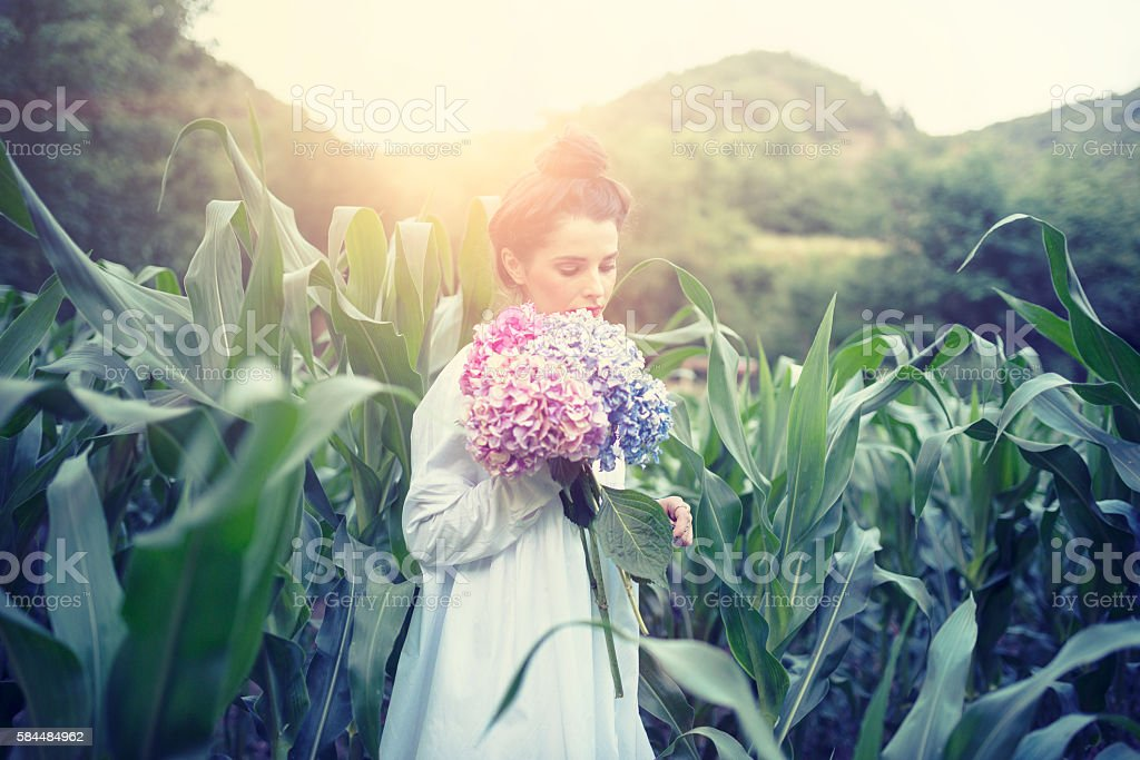 Brunette Woman Holding Flowers in the Corn Field stock photo