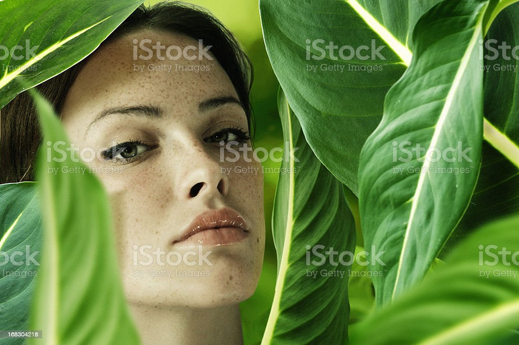 Brunette woman surrounded by green leaves stock photo