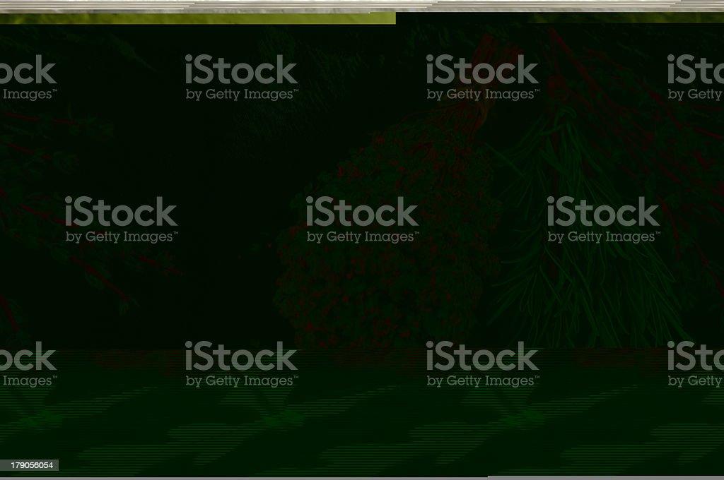 Bruschetta royalty-free stock photo