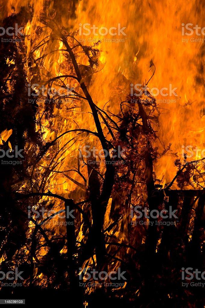 Brush Fire royalty-free stock photo