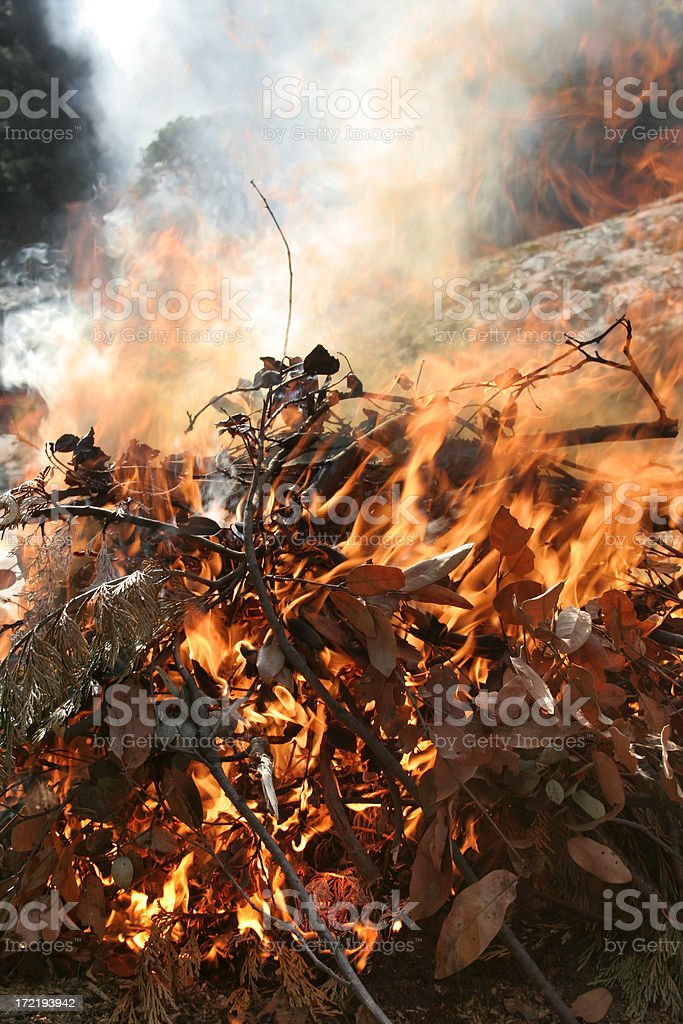 Brush Fire royalty-free stock photo