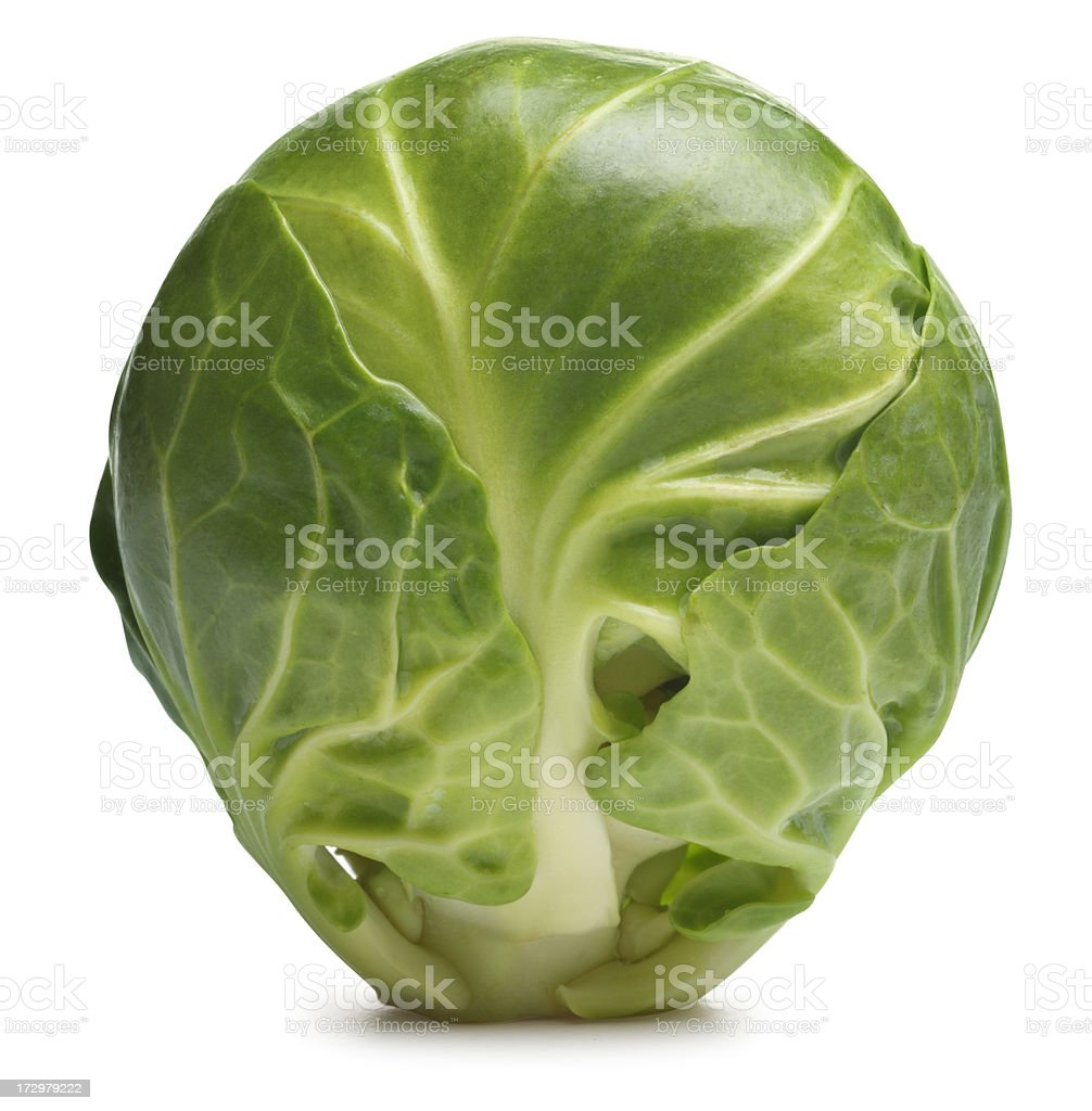 Brussels Sprout stock photo