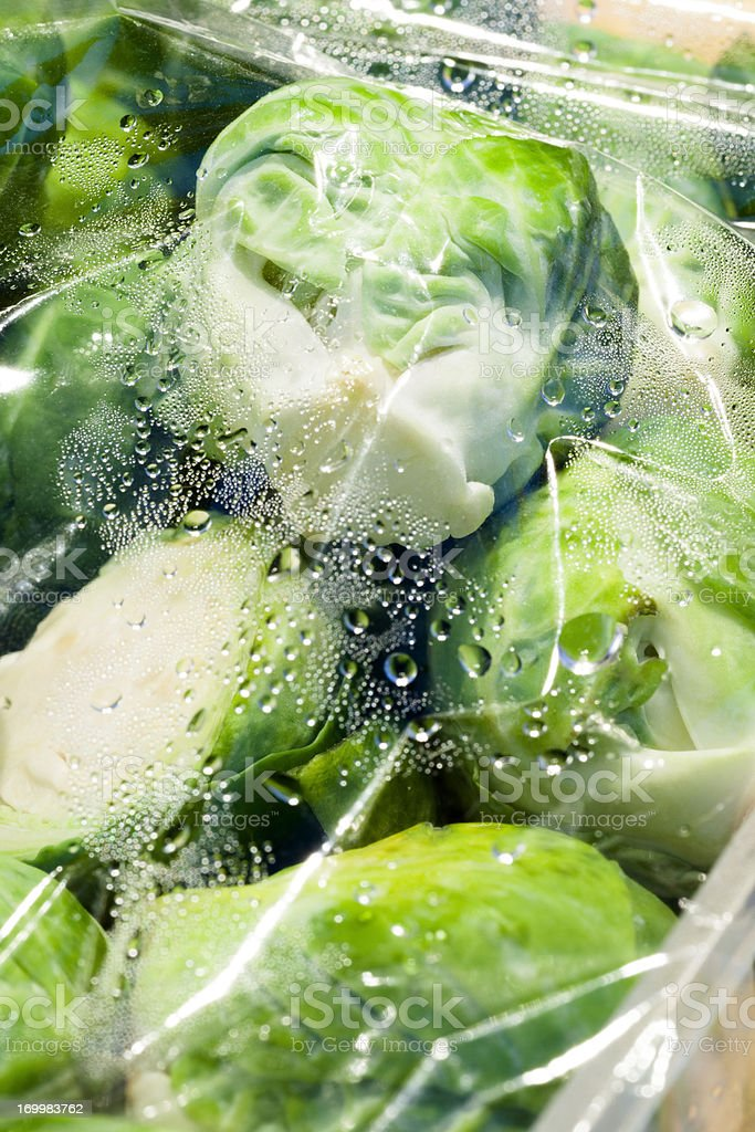 Brussels Sprouts in freezer bag royalty-free stock photo