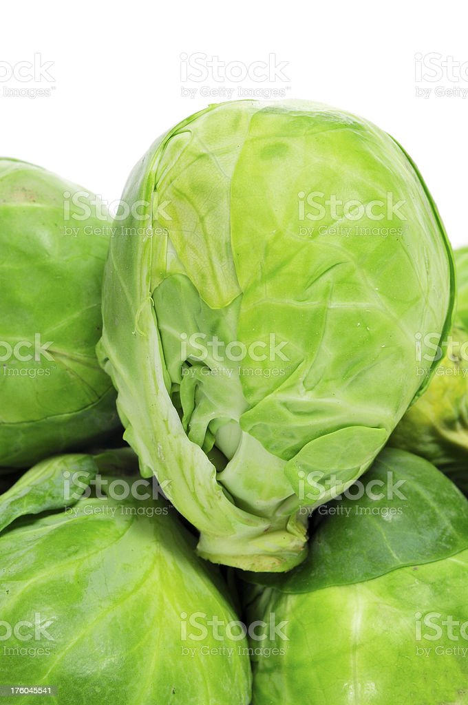 Brussels sprouts royalty-free stock photo