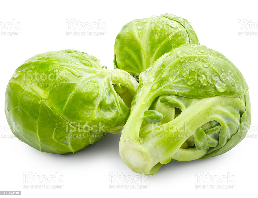 Brussels sprouts with drops of water stock photo
