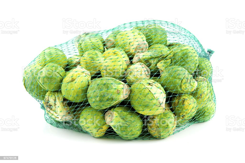 Brussels-sprouts in green net stock photo