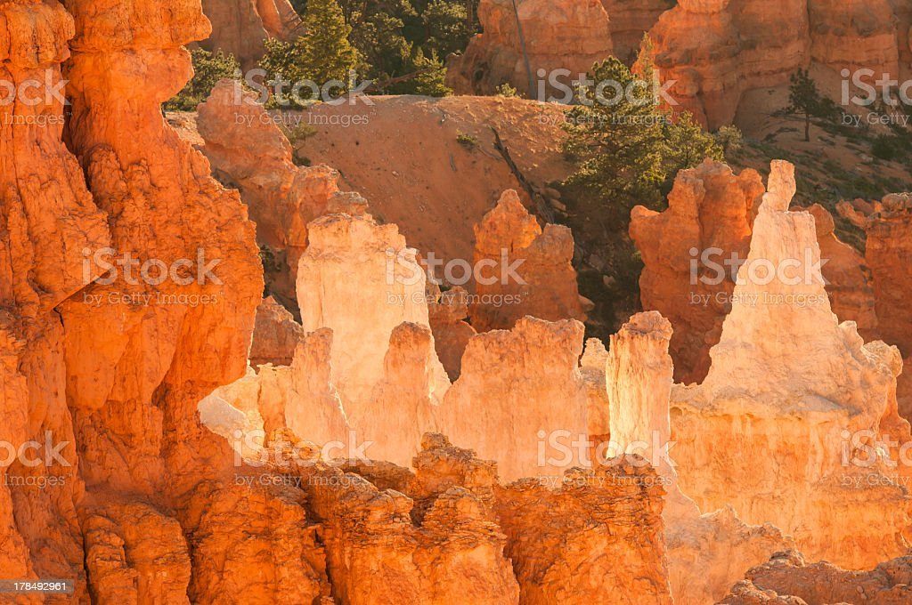 Bryce Canyon at sunrise royalty-free stock photo