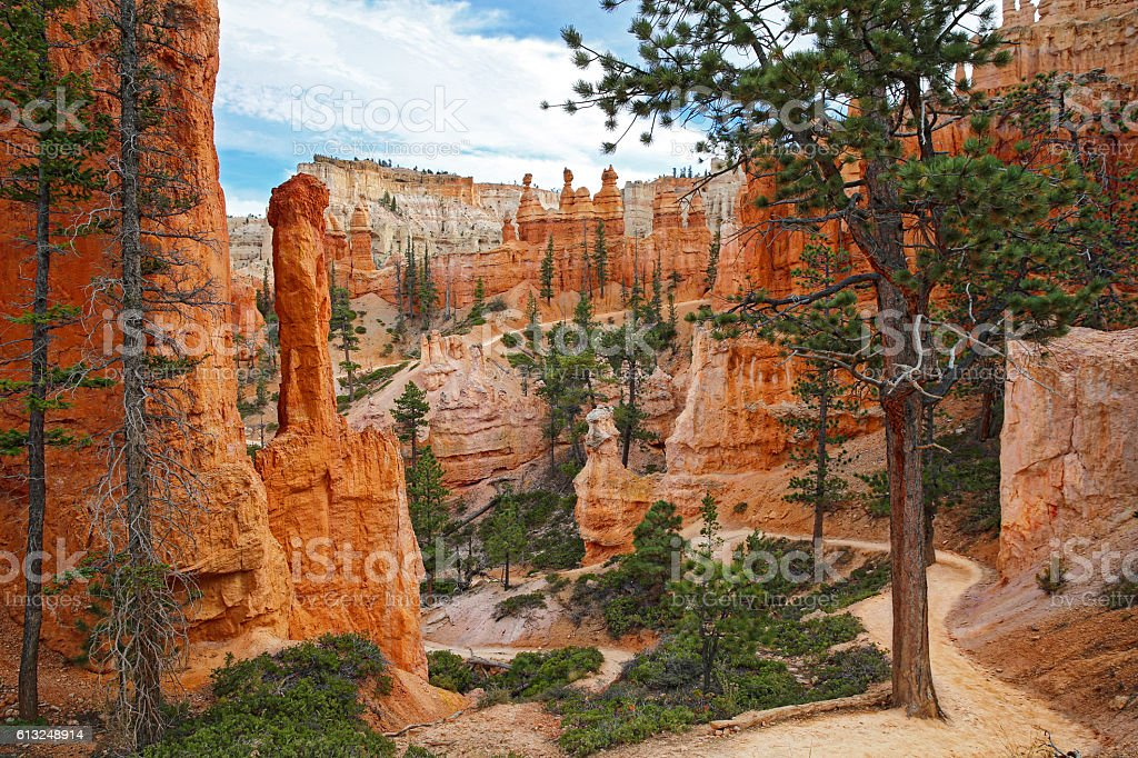 Bryce Canyon Footpath Through The Hoodoos stock photo