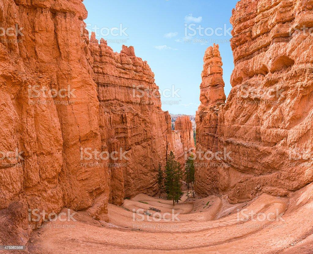 Bryce canyon gorge stock photo