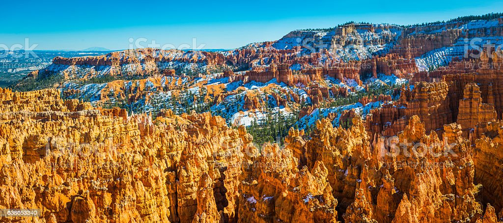 Bryce Canyon National Park golden hoodoos snowy pine forests Utah stock photo