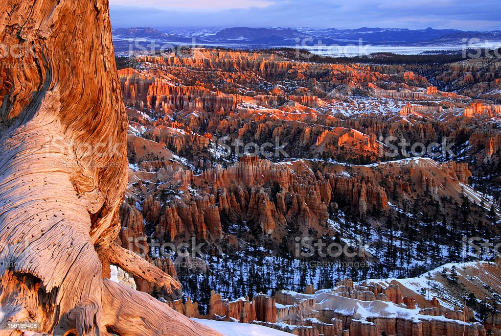 Bryce Canyon National Park in Winter stock photo