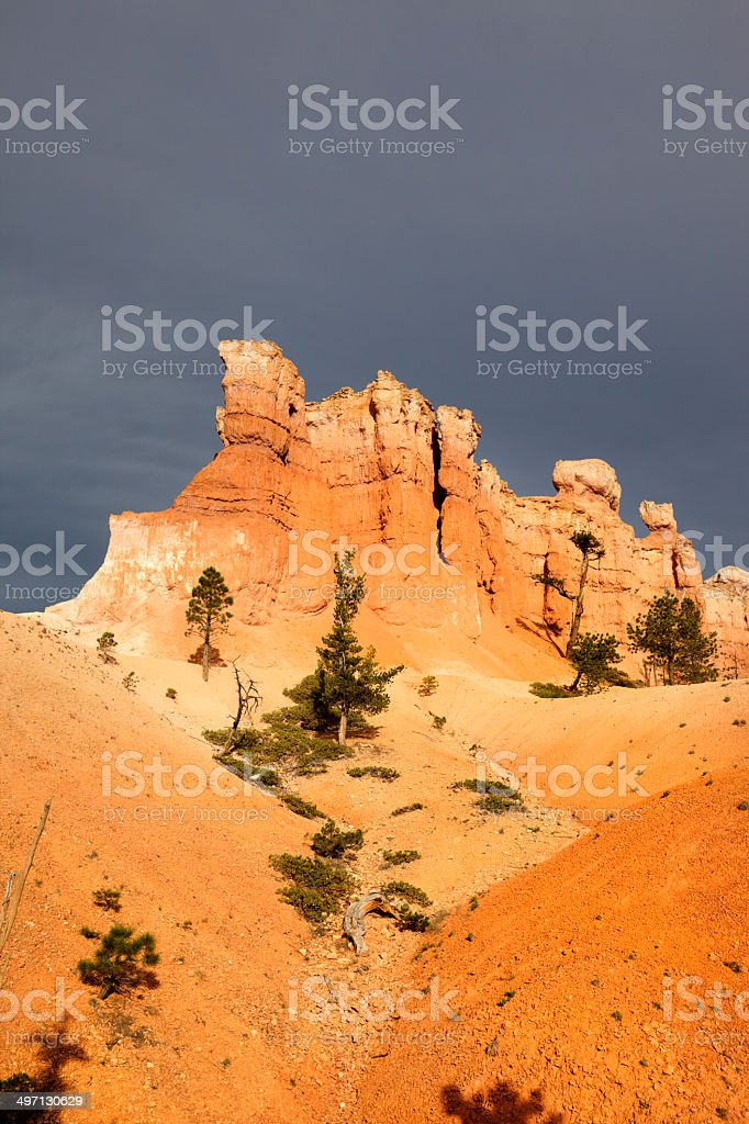 Bryce Canyon National Park : The Amphitheatre royalty-free stock photo