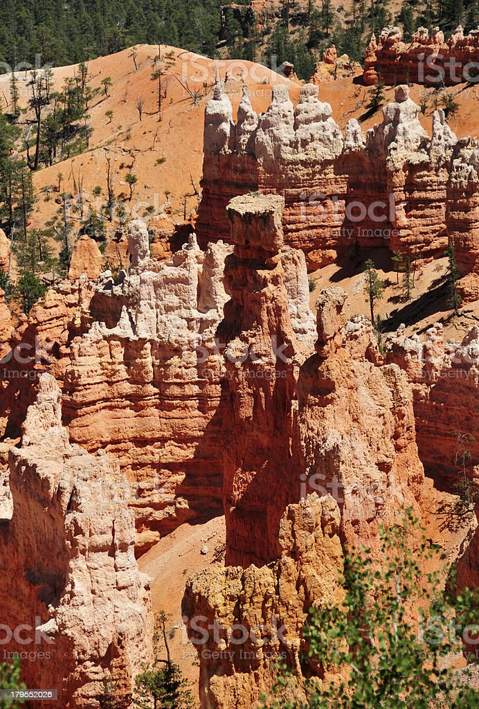 Bryce Canyon National Park, Utah, USA: Sunrise Point royalty-free stock photo