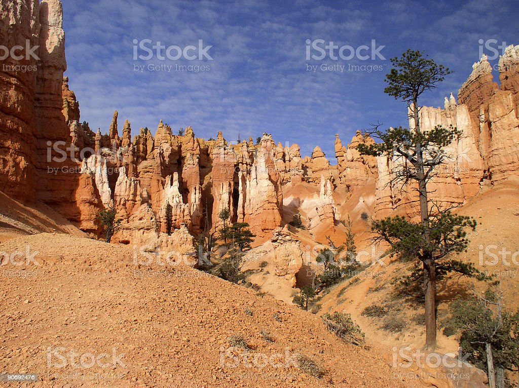 Bryce Canyon View stock photo