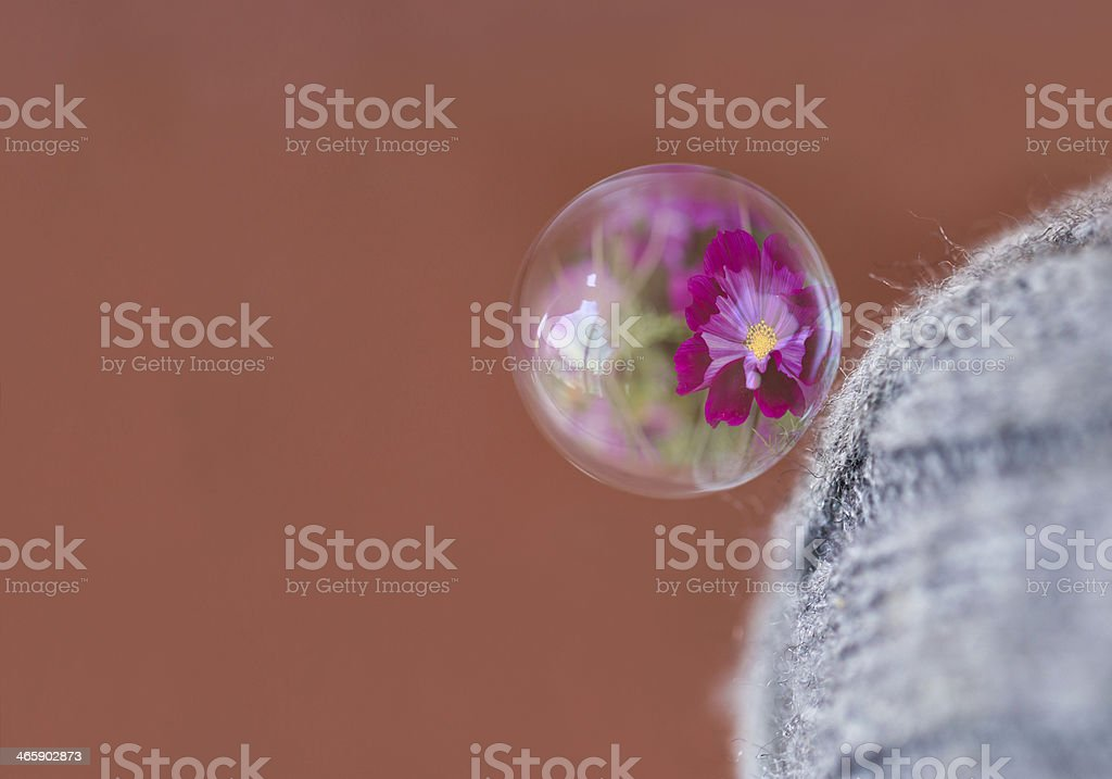 Bubble and reflection. royalty-free stock photo
